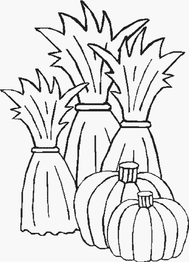 Cornfield Coloring Page - Photos Coloring Page Ncsudan.Org